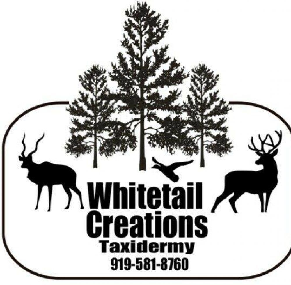 whitetail creations taxidermy and wild game meat